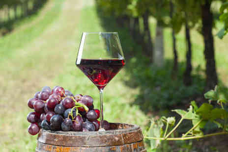 Sedlescombe Organic Vineyard - Vineyard Tour with Wine Tasting and Lunch for Two  - Save 52%