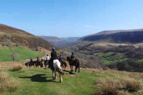 Grange Trekking - Horse riding experience  - Save 59%