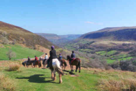Grange Trekking Centre - Horse Riding Lesson and Trek Through the Vale of Ewyas - Save 59%