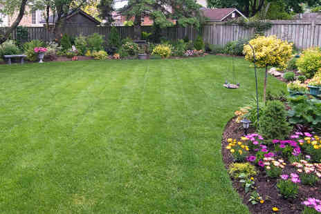 Greensleeves - Fertilizer and Moss Control Treatment for Lawns up to 100 - Save 50%
