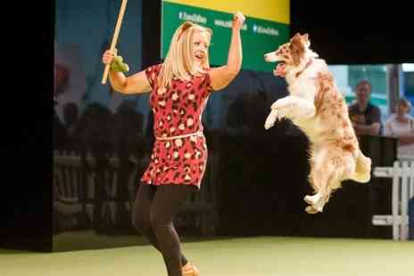National Pet Show - Entry to London Pet Show - Save 26%