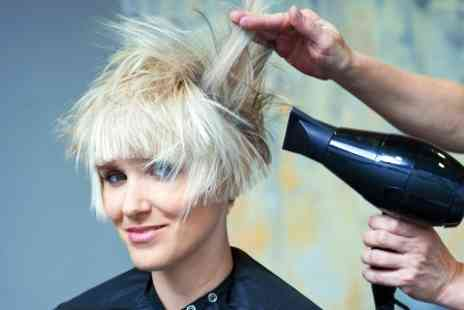 Evolve Hair Company - Wash and Blow Dry  - Save 50%
