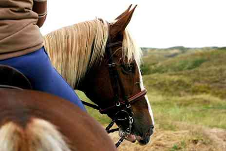 Girlfridaydenise - One Hour Horse Riding Lesson  - Save 0%