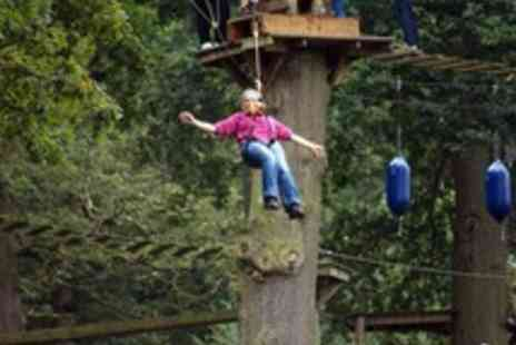 Aerial Extreme  - Tickets to High Rope Adventure and Activity  - Save 43%
