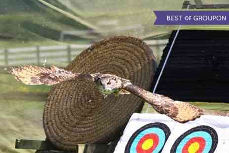 Perriswood Archery and Falconry Centre - Archery and Falconry Experience  - Save 0%