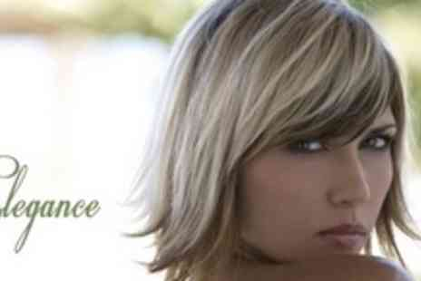Elegance - Full Head of Highlights Plus All Over Tint with a Straight or Curly Blow Dry - Save 67%