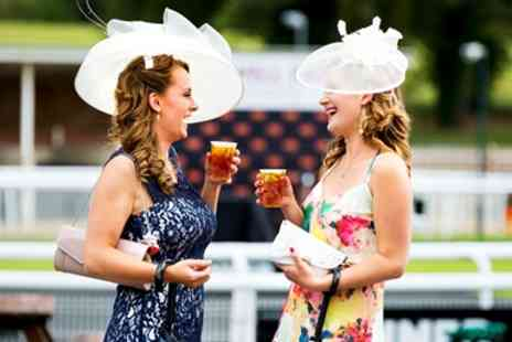 Fontwell Park Racecourse - Ladies Evening including Racing & Music - Save 39%