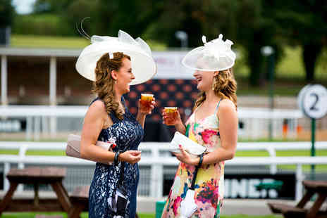 Fontwell Park Racecourse - Entry to Ladies Day for Two including a racecard each   - Save 53%