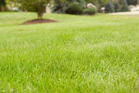 Greensleeves - Greensleeves Lawncare for Lawn Treatment - Save 53%
