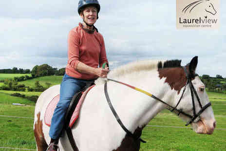 Laurel View Equestrian Centre - 45 Minute Private Horse Riding Lesson for One - Save 50%