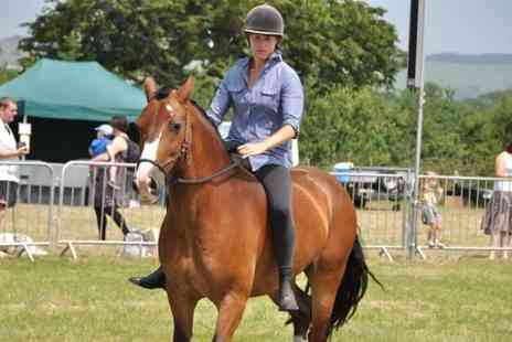 Liberty Horses CIC - One Hour Horse Riding - Save 0%