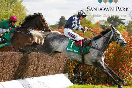 Sandown Park Racecourse - Ladies Day at Sandown Park with Bottle of Pannier - Save 35%