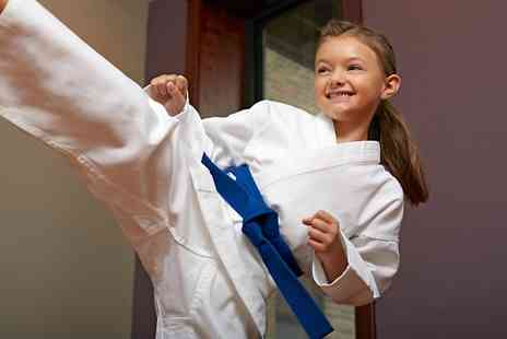 Dragon i - Two taekwondo classes for children or adults  - Save 50%