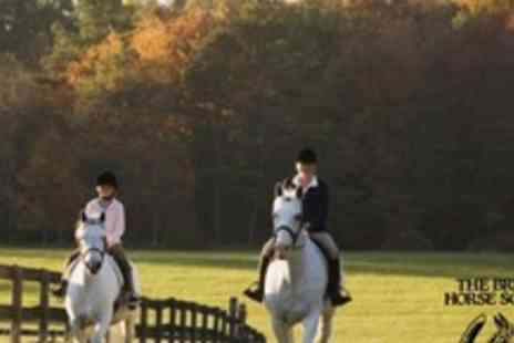 Aldersbrook Riding School - Four Hour Equestrian Experience - Save 60%