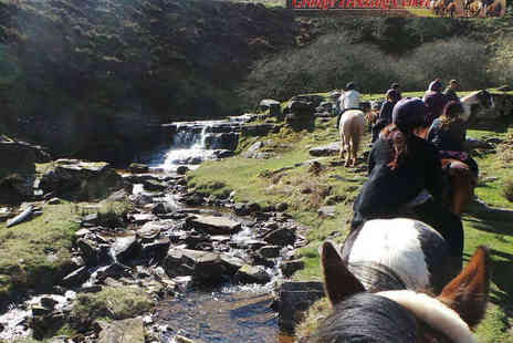 Grange Trekking - One Hour Horse Riding Lesson with One Hour Trek for One  - Save 56%
