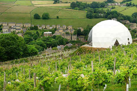 Holmfirth Vineyard - Vineyard Tour and Wine Tasting with Brunch or Afternoon Tea  - Save 0%