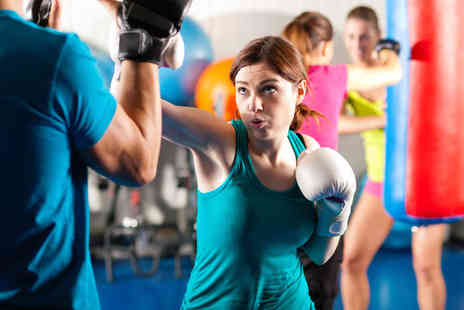 Elemental Kickboxing Academy - Eight Kickboxing Classes - Save 75%