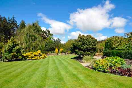 Greensleeves - Lawn Fertiliser and Weed Control Treatment - Save 53%