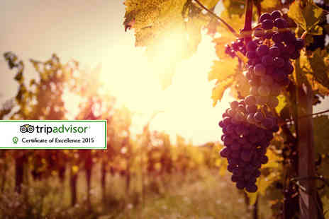 Sedlescombe Organic Vineyard - Wine tasting and lunch for two, followed by a luxury overnight stay with breakfast  - Save 48%