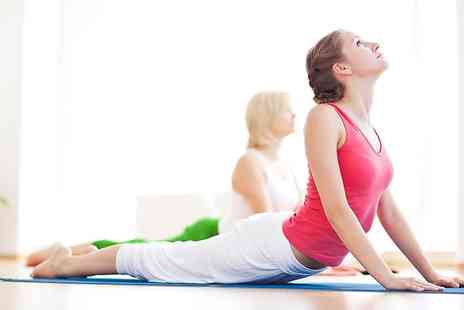 The Yoga Pilates Place - Five Hot or Ashtanga Yoga Classes For One  - Save 54%