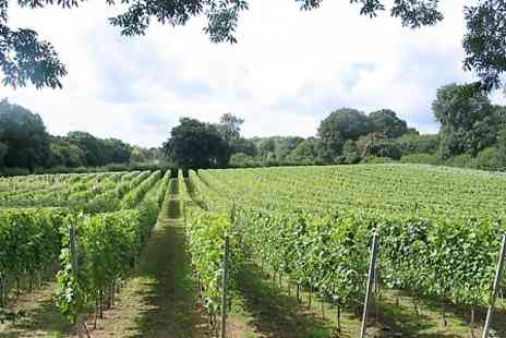 English Oak Vineyard -  Oak Vineyard Tour With Wine Tasting - Save 0%