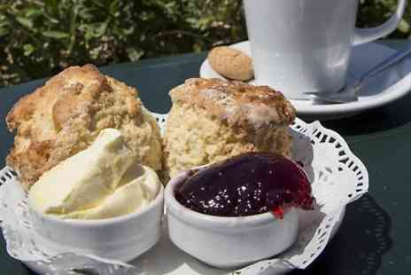 The Ilchester Arms Hotel - Cream Tea For Two  - Save 39%
