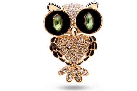 Finishing touch - Crystal Owl Brooch - Save 80%