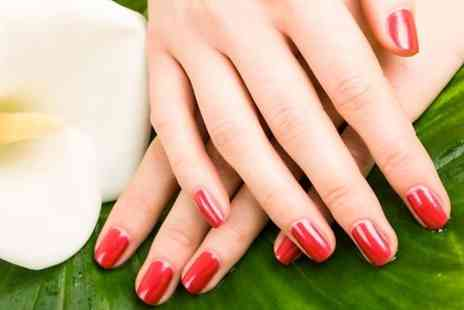Sante Spa - Shellac Nails On Hands or Feet - Save 40%