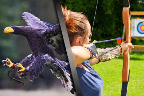 Birds of Prey Centre - Three hour Raptor & Reload bird handling and target shooting experience for One  - Save 76%