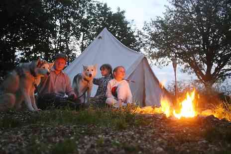 Eagle Heights - One Night Camping With Husky Experience and Barbecue For Two for Four  - Save 0%
