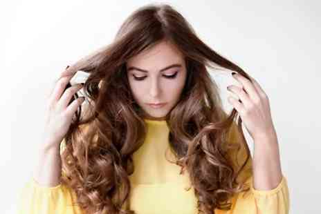 Harmony Hair And Beauty Clinic - Micro Ring Hair Extensions  - Save 53%