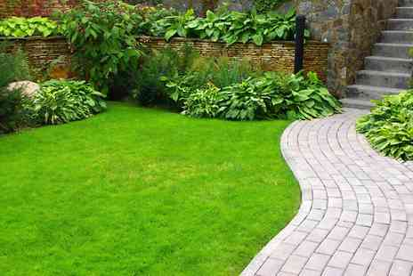 Greensleeves - Lawn Treatment  - Save 53%