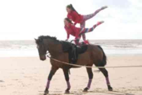 Talygarn Equestrian Centre -  Beginners horse vaulting lesson - Save 0%