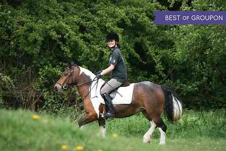 Trent Park Equestrian Centre -  Four Day Horse Riding Course  - Save 59%