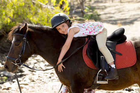 Equine Learning - One day summer holiday childrens pony experience  - Save 40%