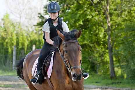 Kathbern Stables - Half Day Equestrian Experience - Save 0%