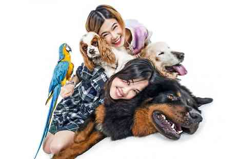 Venture Photography - Pet or Family Photoshoot With Framed Print and Access to App - Save 0%