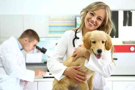 Pet Addict - Online Veterinary Assistant Course - Save 94%
