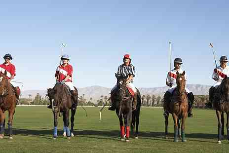 Vale of York Polo club - Two Hour Polo Lesson For One - Save 66%