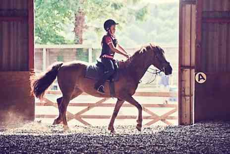 Kathbern Stables - Horse Riding Experience - Save 0%