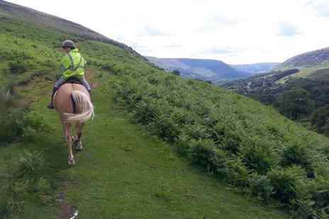 Grange Trekking - Horse Riding Lesson and 60 Minute Trek - Save 56%