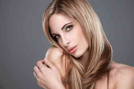Fabi Fabulous Hair - Half head of highlights package - Save 0%