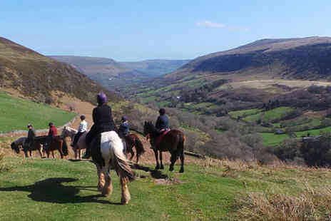 Grange Trekking - Pony riding lesson and trek for one   - Save 56%