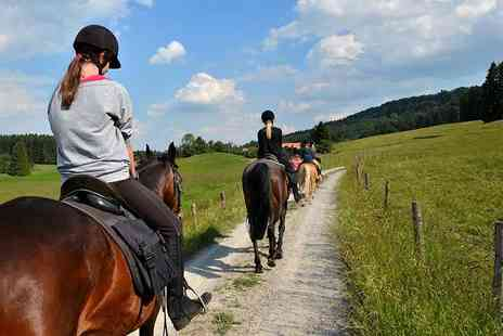 Equine Learning - Two hour horse trail ride and picnic  - Save 44%
