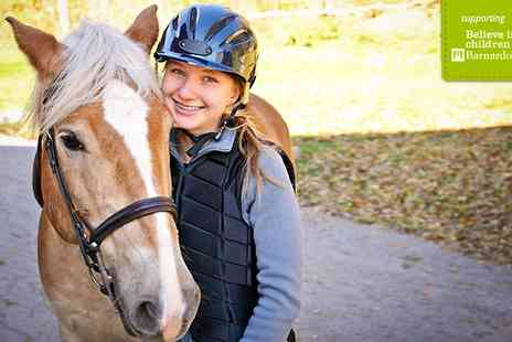 Edinburgh & Lasswade Riding Centre - Riding Lesson or Hack - Save 52%