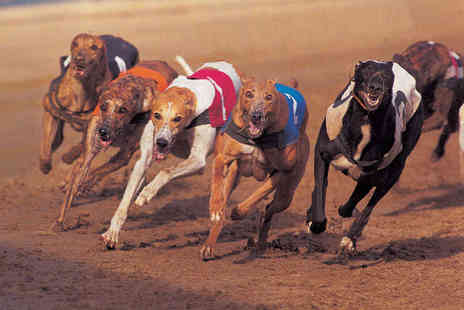 Drumbo Park - Greyhound Racing Admission with Burger and Beer Each for Two  - Save 85%