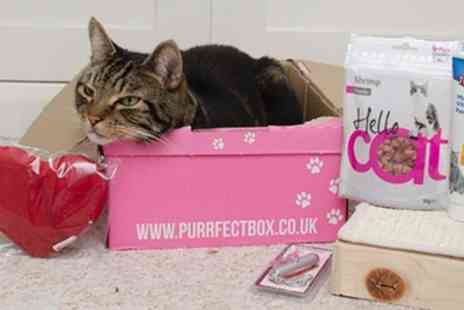 Animal Box - One or Three Month offer to Pawsomebox or Purrfectbox for Dogs or Cats  - Save 0%