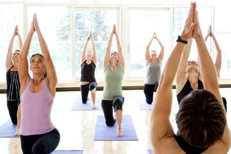 Yoga Euphoria Birkdale - Eight Hot Yoga Sessions for One  - Save 0%