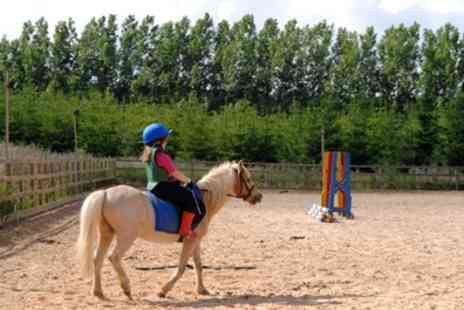 Quarry Farm Stables - Private Horse Riding Lesson for Children - Save 47%