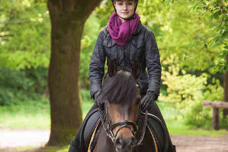 Edinburgh & Lasswade Riding Centre - Hour Long Horse Riding Lesson or Hack with Hat Hire - Save 52%